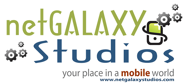 Search Engine Optimization Services | netGALAXY Studios